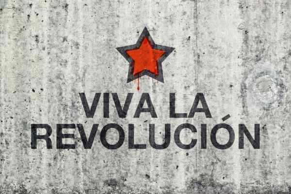 Vive la Revolucion!: The Professional Plan as Revolutionary Tool for Career Success